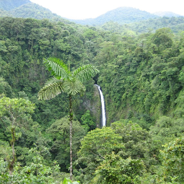 Catarata la Fortuna - La Fortuna - Costa Rica
