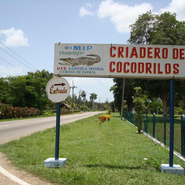 Criadero de Cocodrilos - Boca de Guamá - Cuba