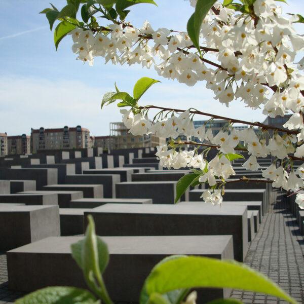 Holocaust Denkmal - Berlijn - Duitsland