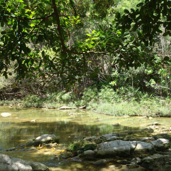 Baños del San Juan - Las Terrazas - Cuba