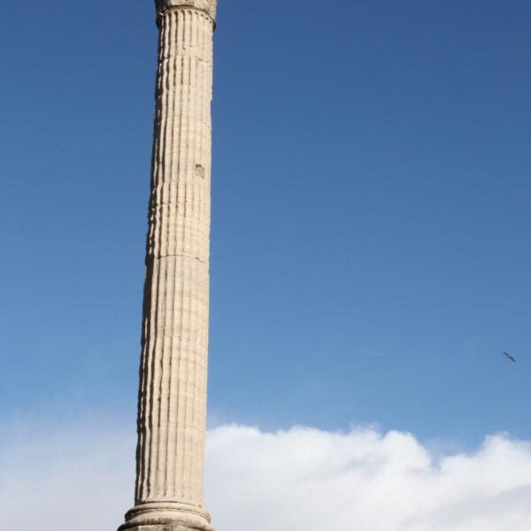 Zuil van Phocas - Rome - Italië