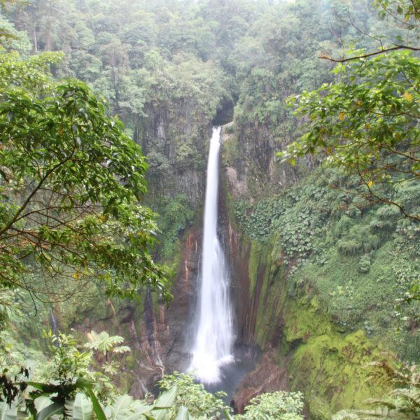 Catarata del Toro - Bajos del Toro - Costa Rica