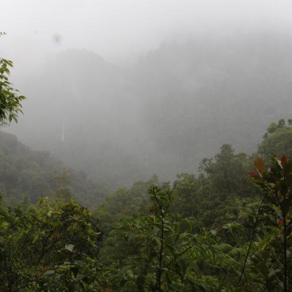 Parque Nacional Tapanti Macizo de la Muerte - Costa Rica