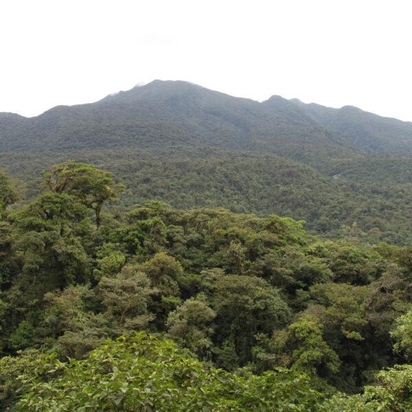 Parque Nacional Volcán Tenorio - Costa Rica
