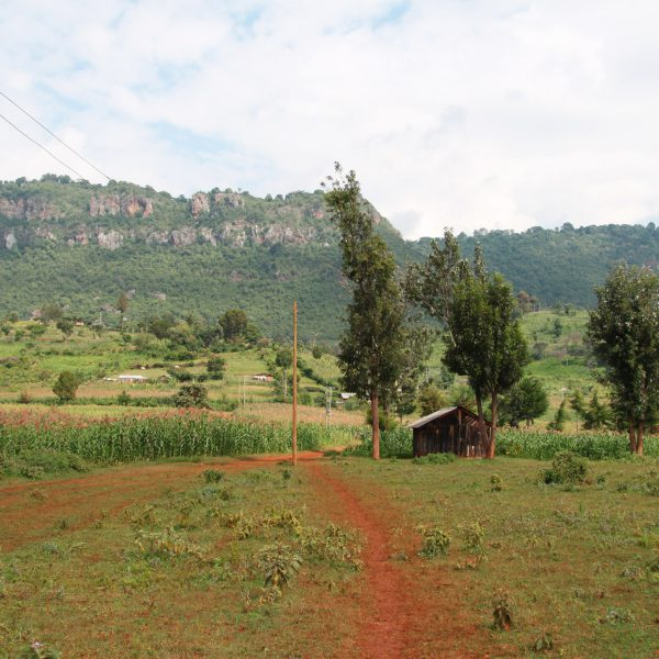 Kerio Valley National Reserve - Kenia