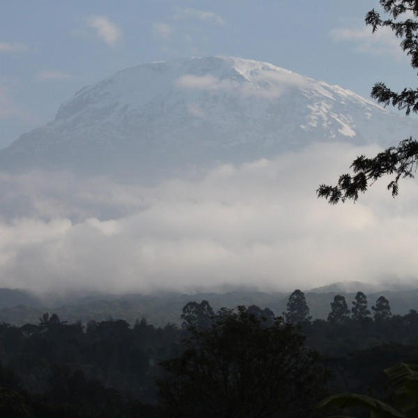 Kilimanjaro National Park - Tanzania