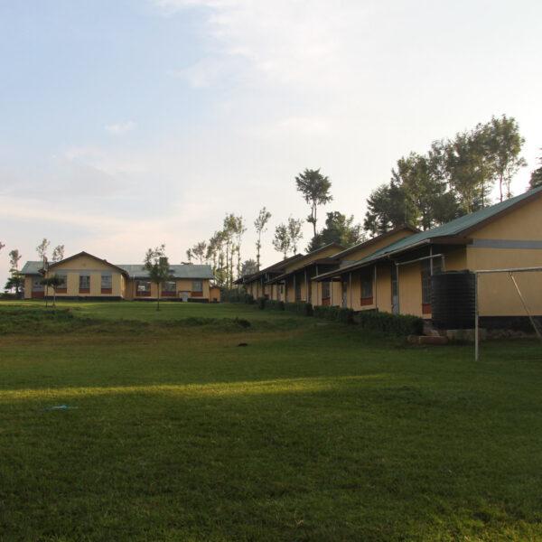 Mago - Kenia