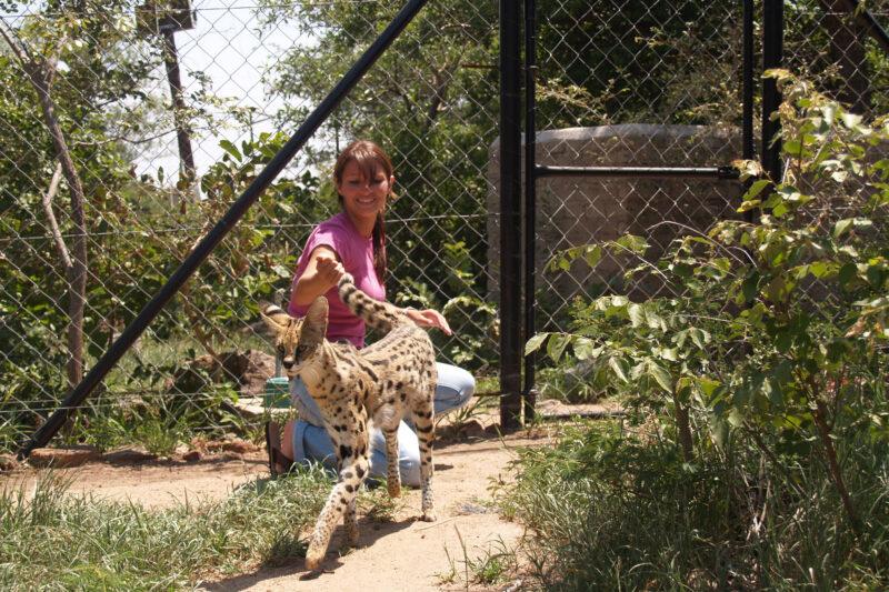 Moholoholo - Dieren rehabilitatie en opvang