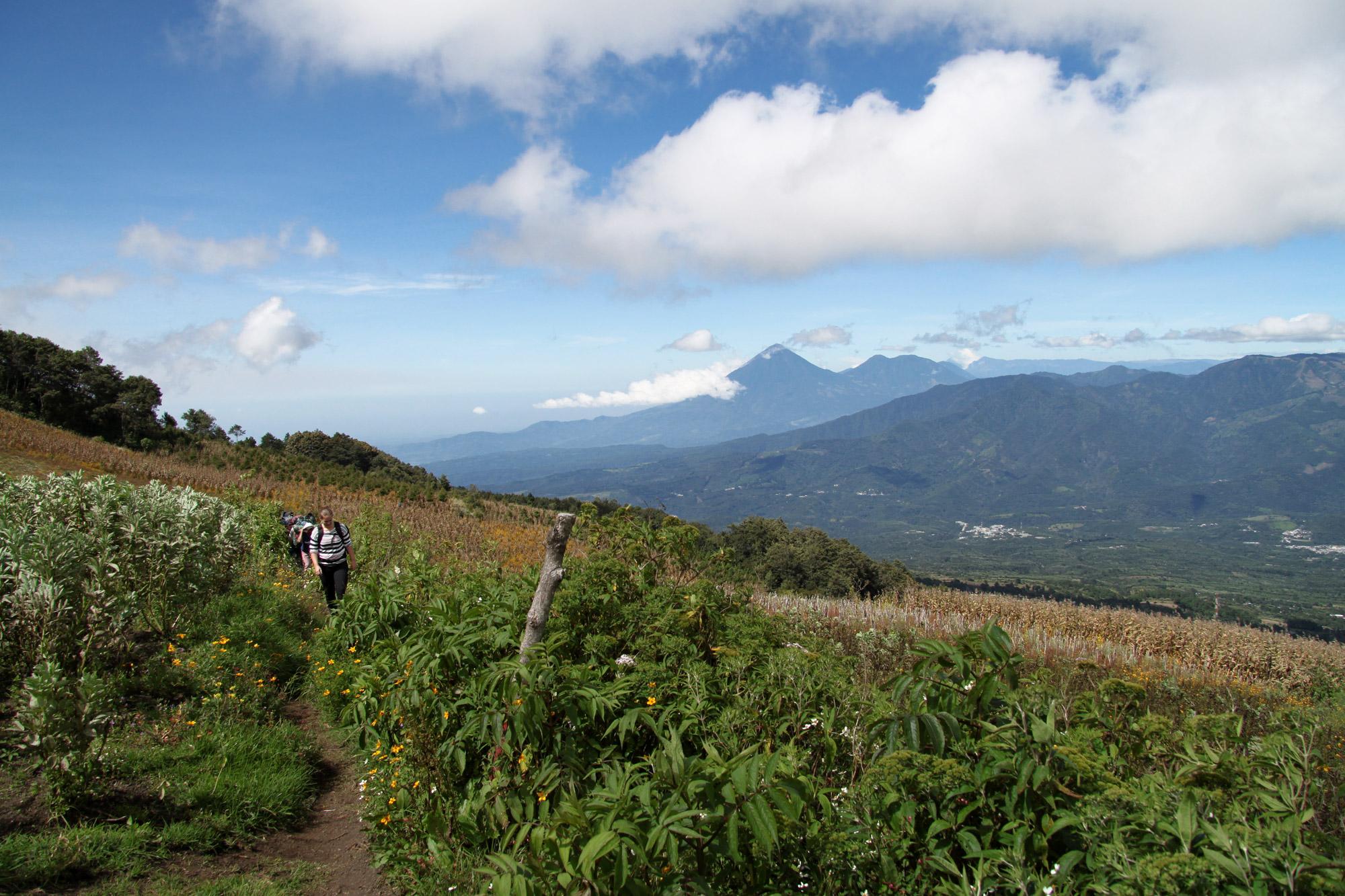 Guatemala 2015 - dag 4 - Beklimming van de Volcán Acatenango