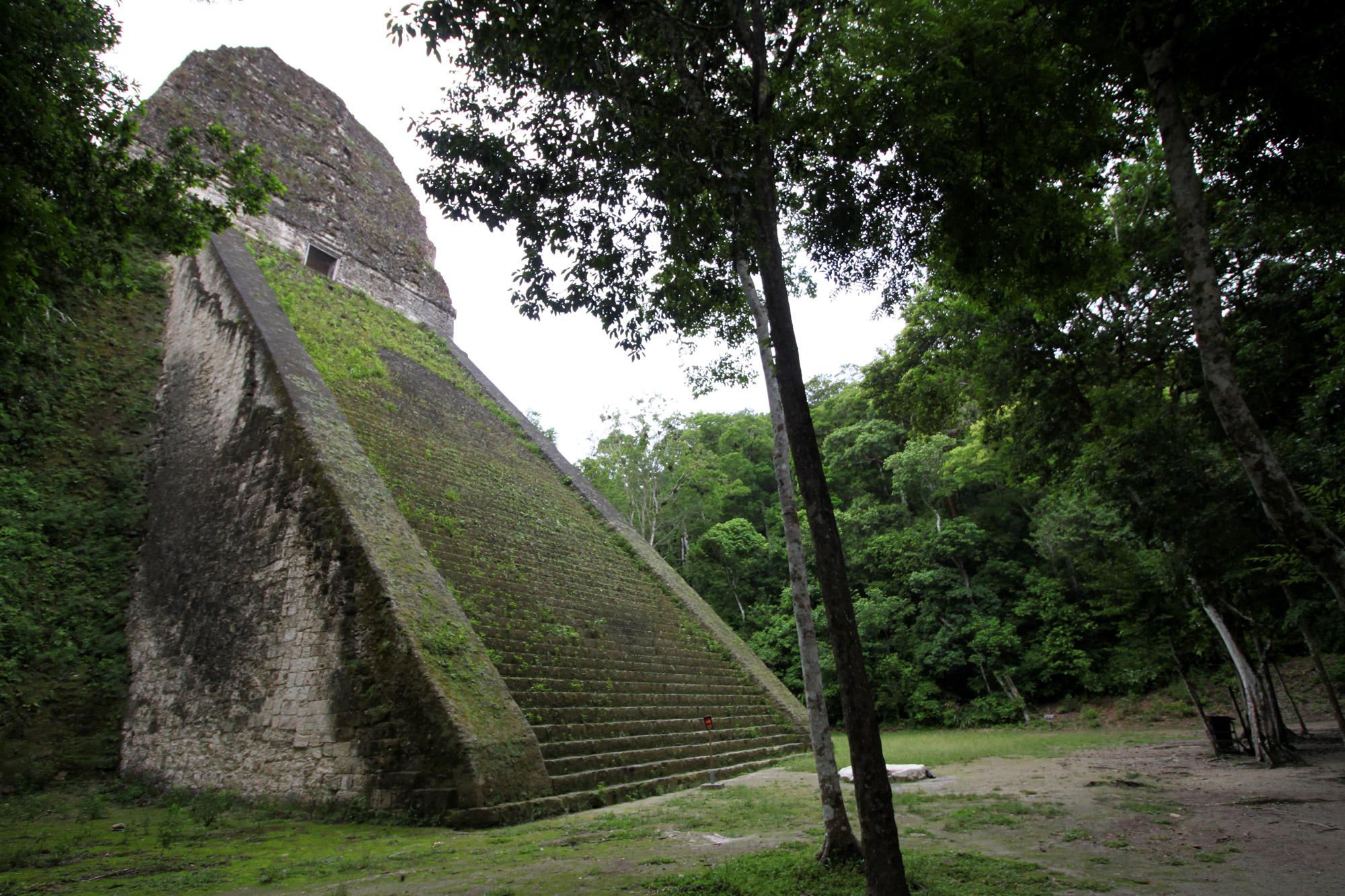 Guatemala 2015 - dag 7 - Templo V in Tikal