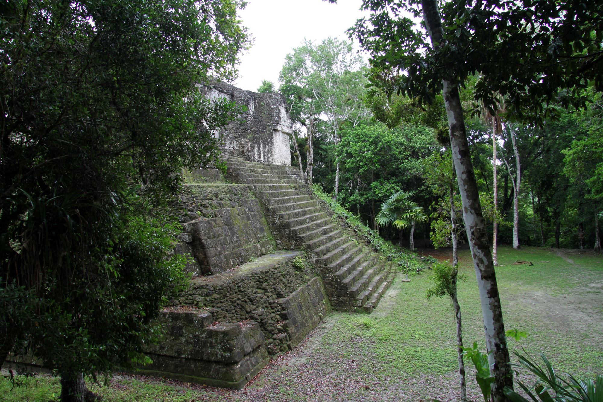 Guatemala 2015 - dag 8 - Tweede dag in Tikal