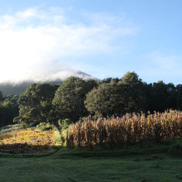 Volcán Santa Maria - Guatemala