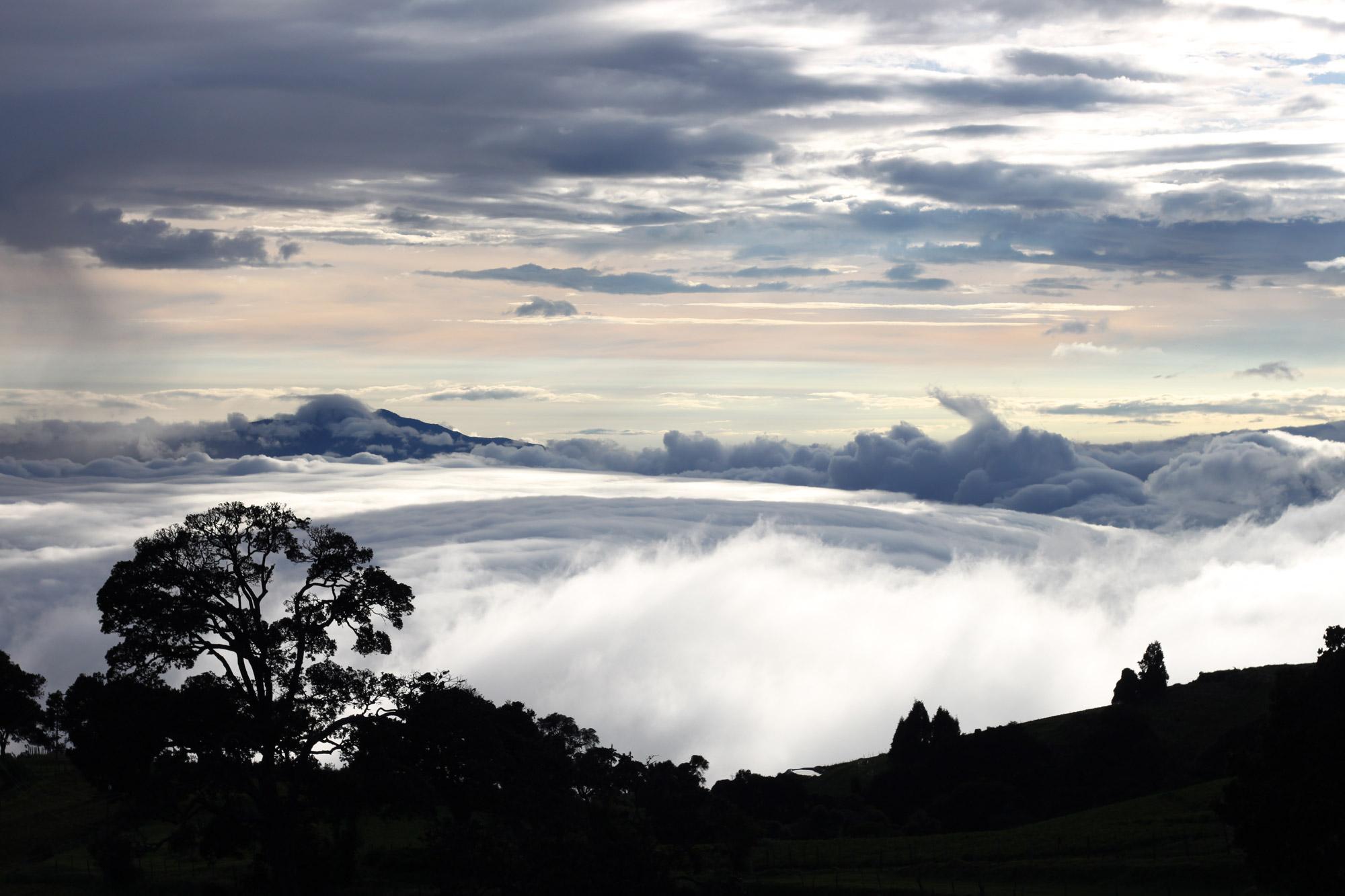 Foto en het verhaal: een absolute goedmaker in Costa Rica