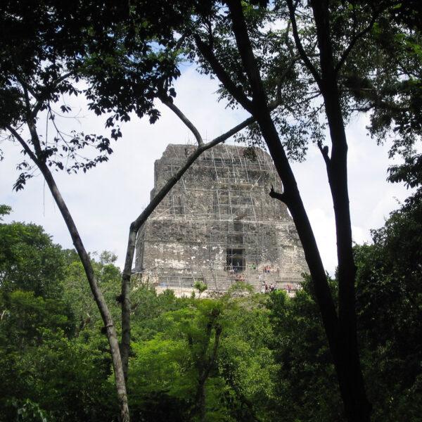 Templo IV - Tikal - Guatemala