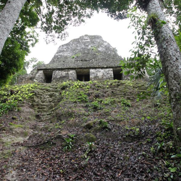 Templo VI - Tikal - Guatemala