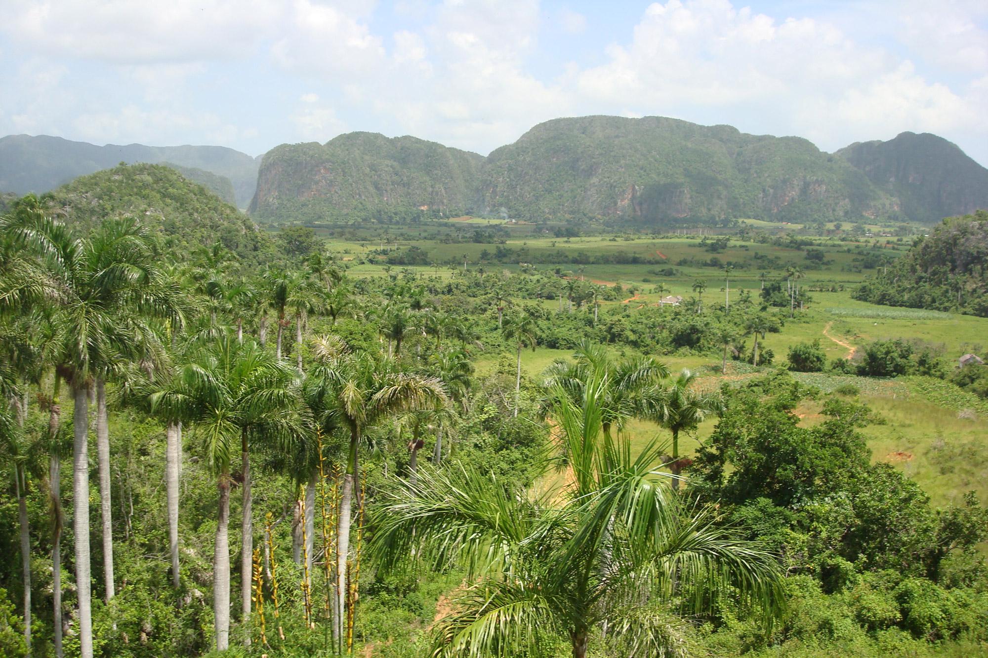 Top 5 gebieden in Cuba die je echt bezocht moet hebben: Valle de Viñales