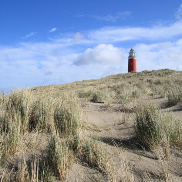 Texel - Nederland