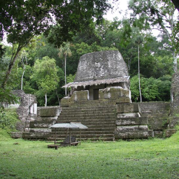 Plaza de los Siete Templos - Tikal - Guatemala