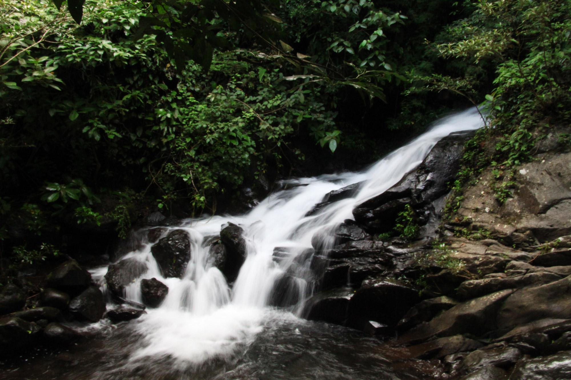 Costa Rica 2014 - dag 11 - Parque Nacional Rincon de la Vieja