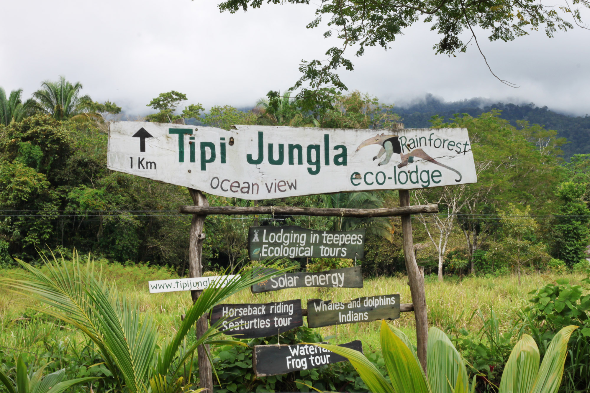 Costa Rica 2014 - dag 12 - Tipi Jungla