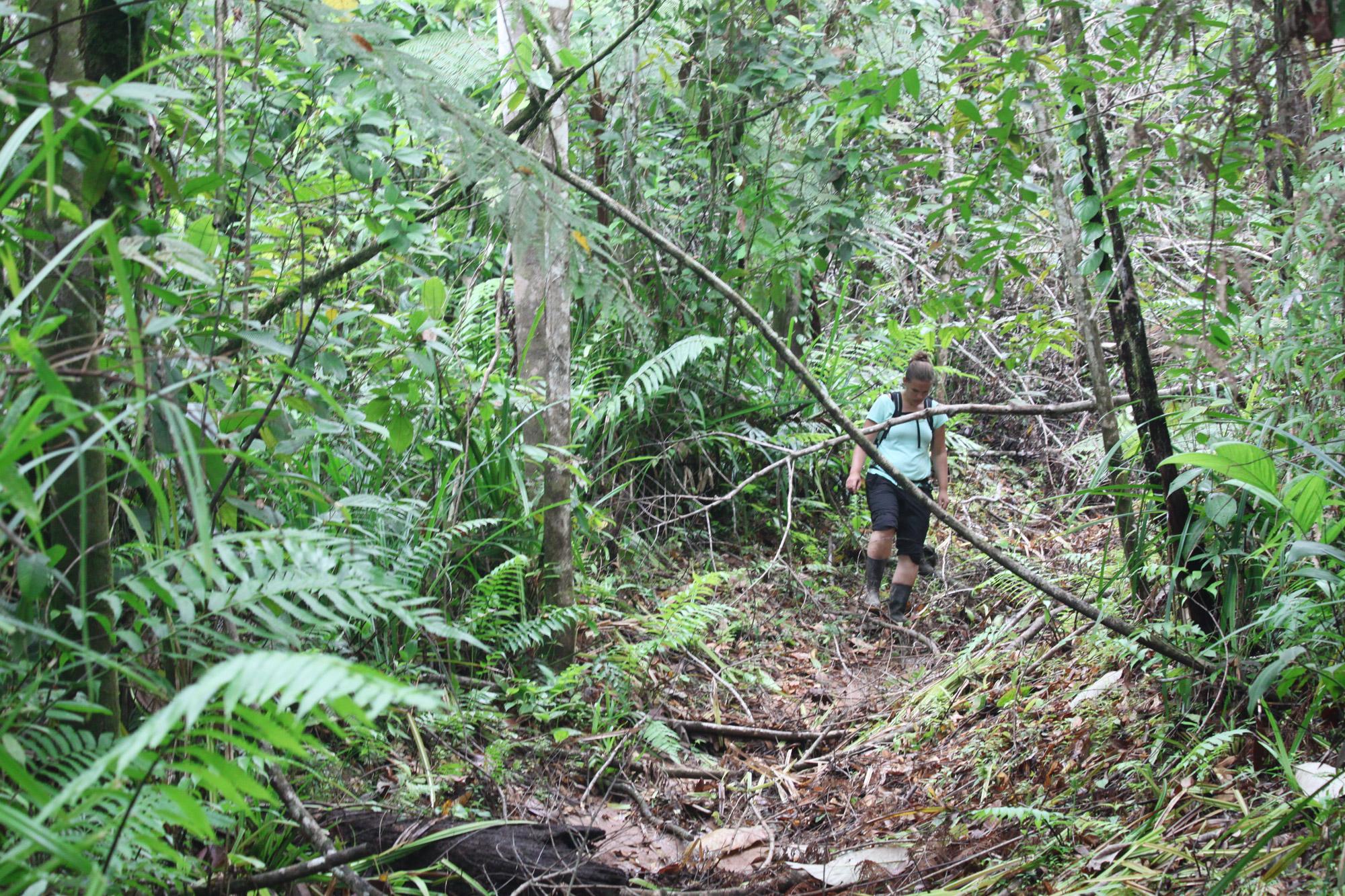 Costa Rica 2014 - dag 20 - Parque Nacional Piedras Blancas