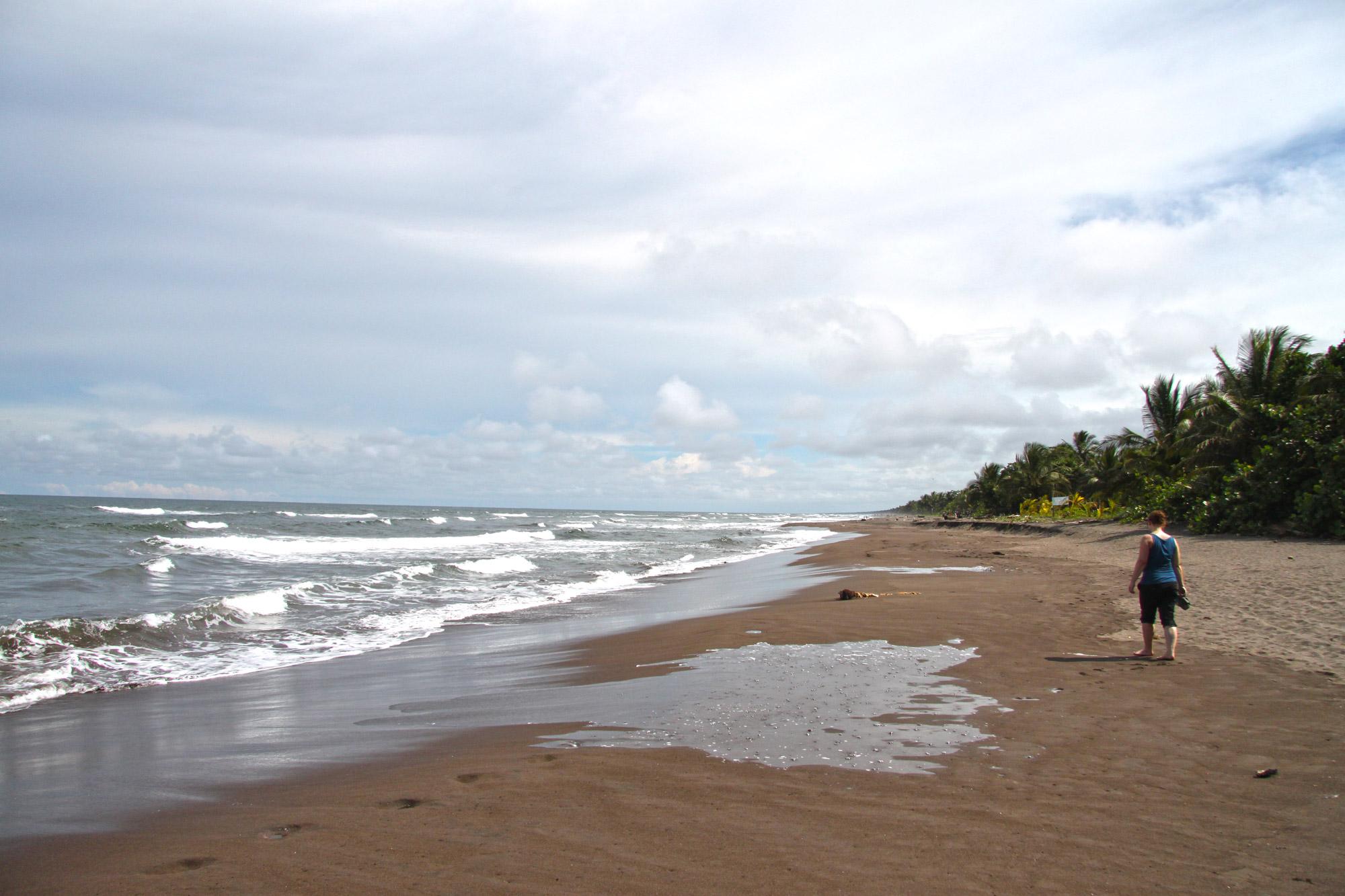 Costa Rica 2014 - dag 4 - Tortuguero