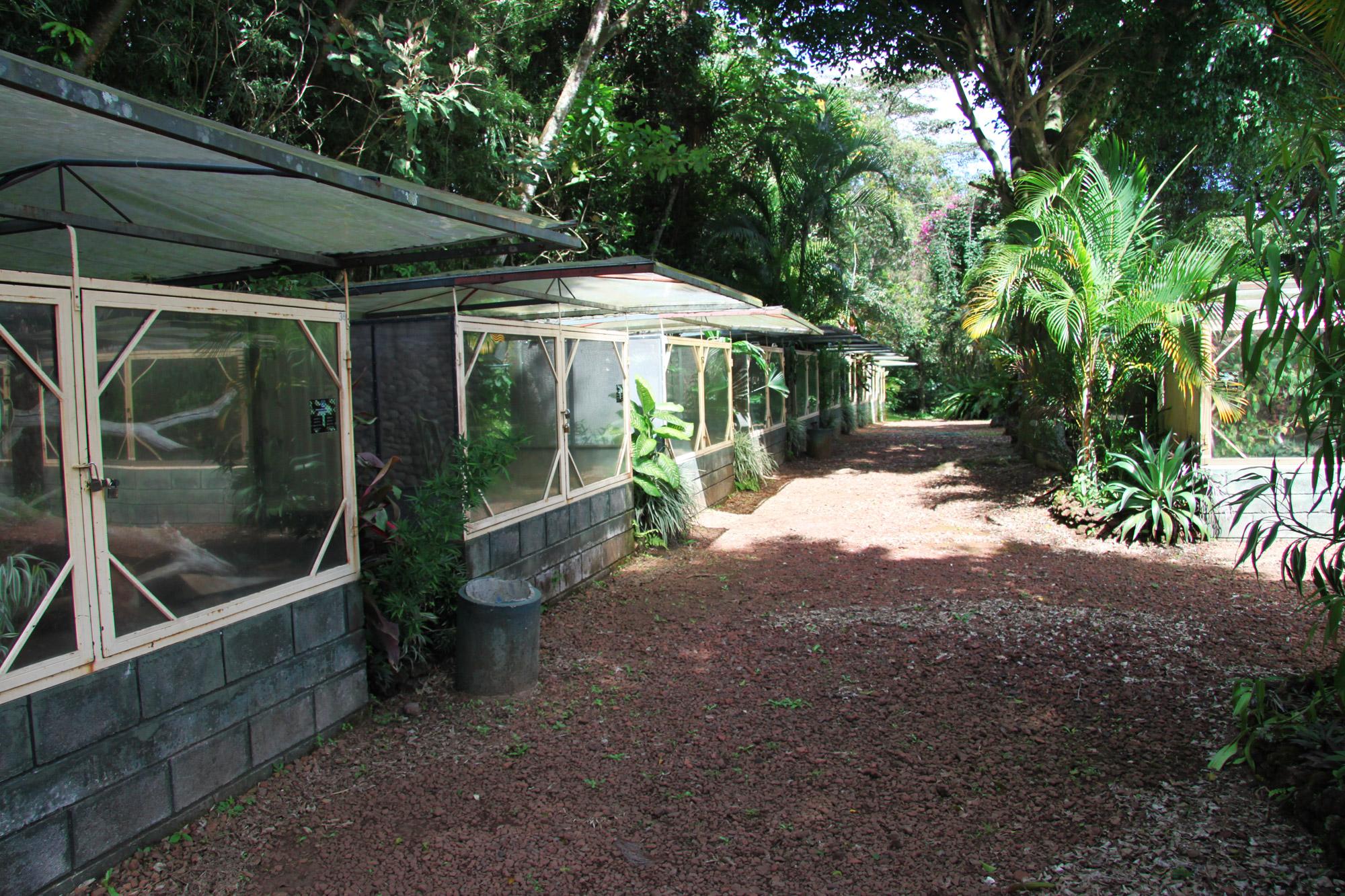 Costa Rica 2014 - dag 7 - World of Snakes