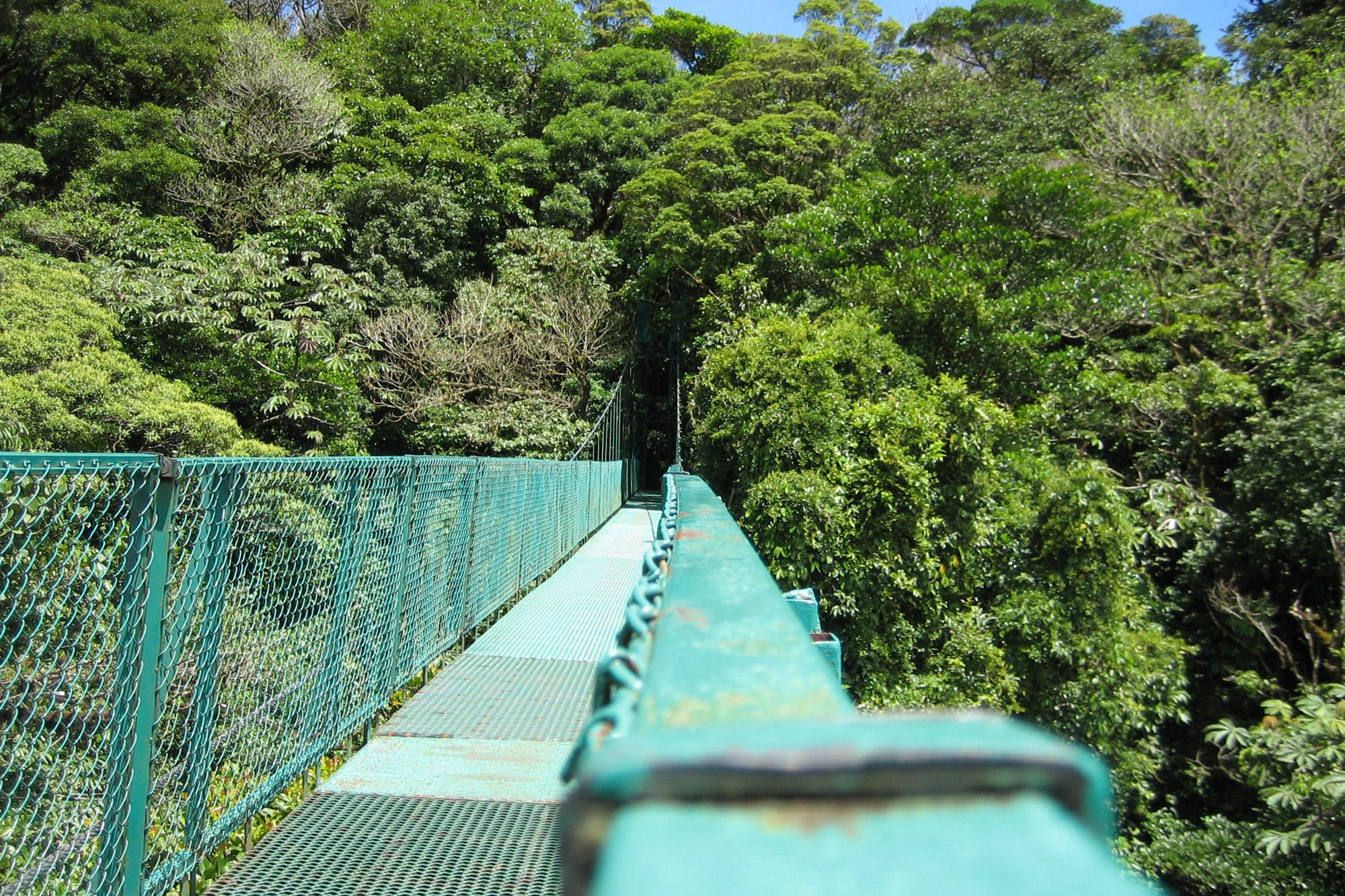 5 reden om naar Costa Rica te reizen - Volop activieiten: hangbruggen