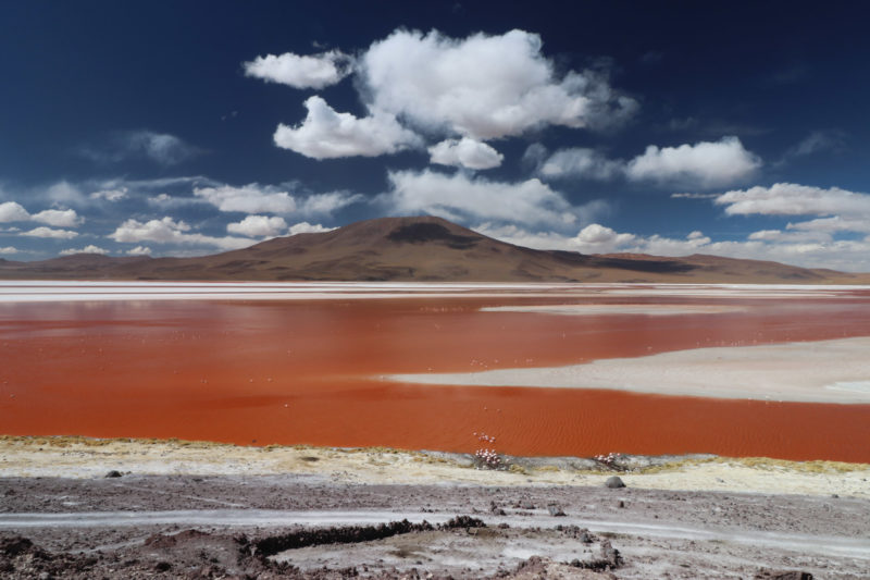Reisverslag Bolivia: Four Days Of Fantasy Tour - Laguna Colorada
