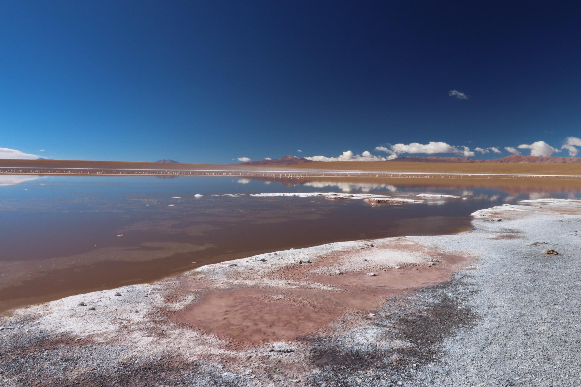 Reisverslag Bolivia: Four Days Of Fantasy Tour - Laguna Hedionda Sur