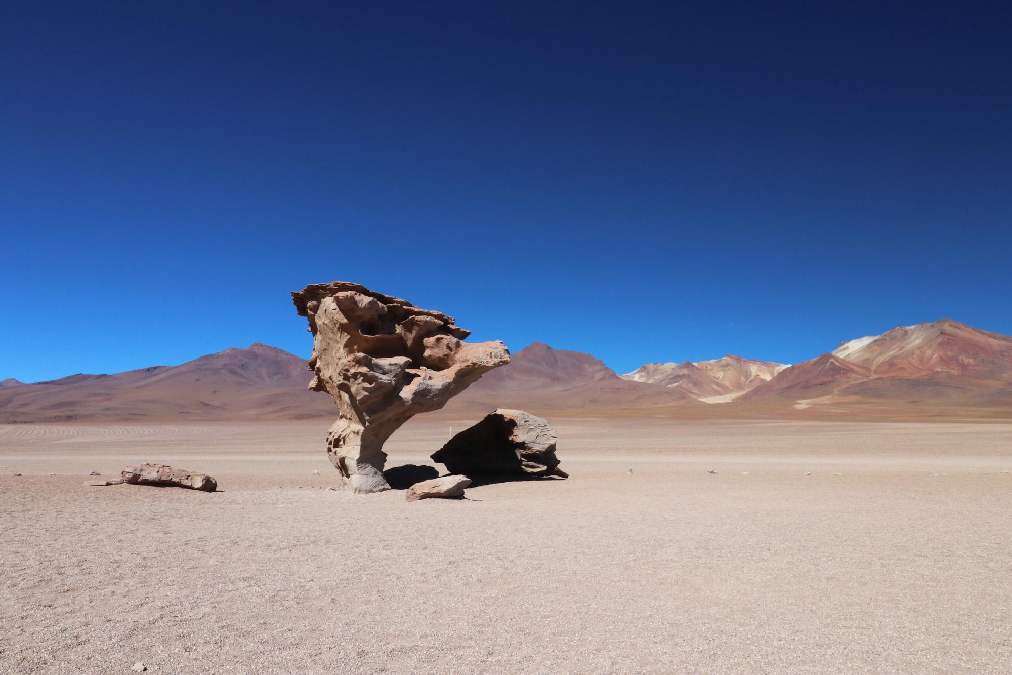 Reisverslag Bolivia: 's wereld grootste zoutvlakte - Arbol de Piedra
