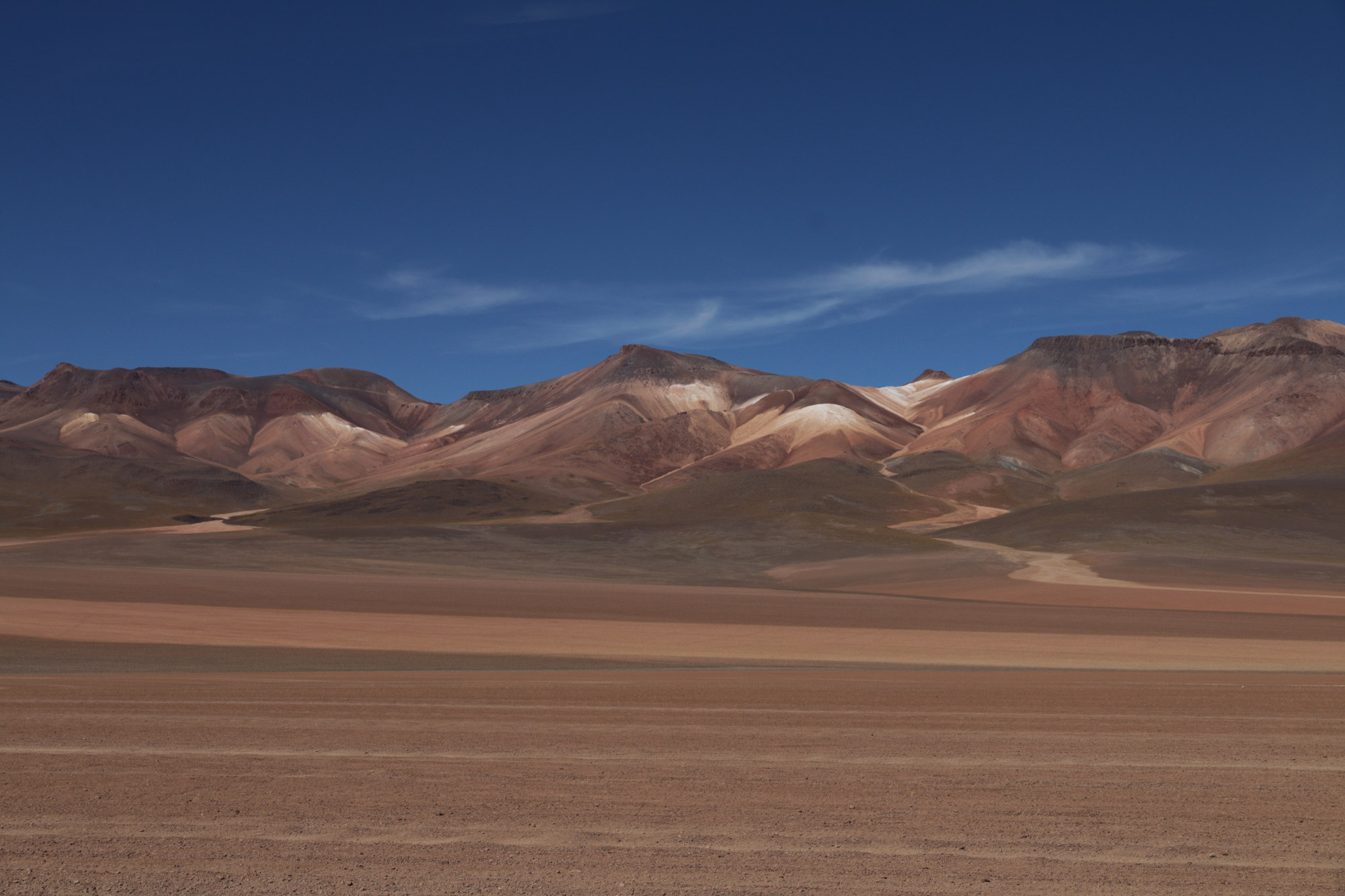 Reisverslag Bolivia: 's wereld grootste zoutvlakte - Desierto Siloli