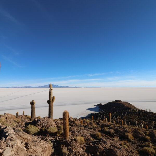 Reisverslag Bolivia: 's wereld grootste zoutvlakte - Isla Incahuasi