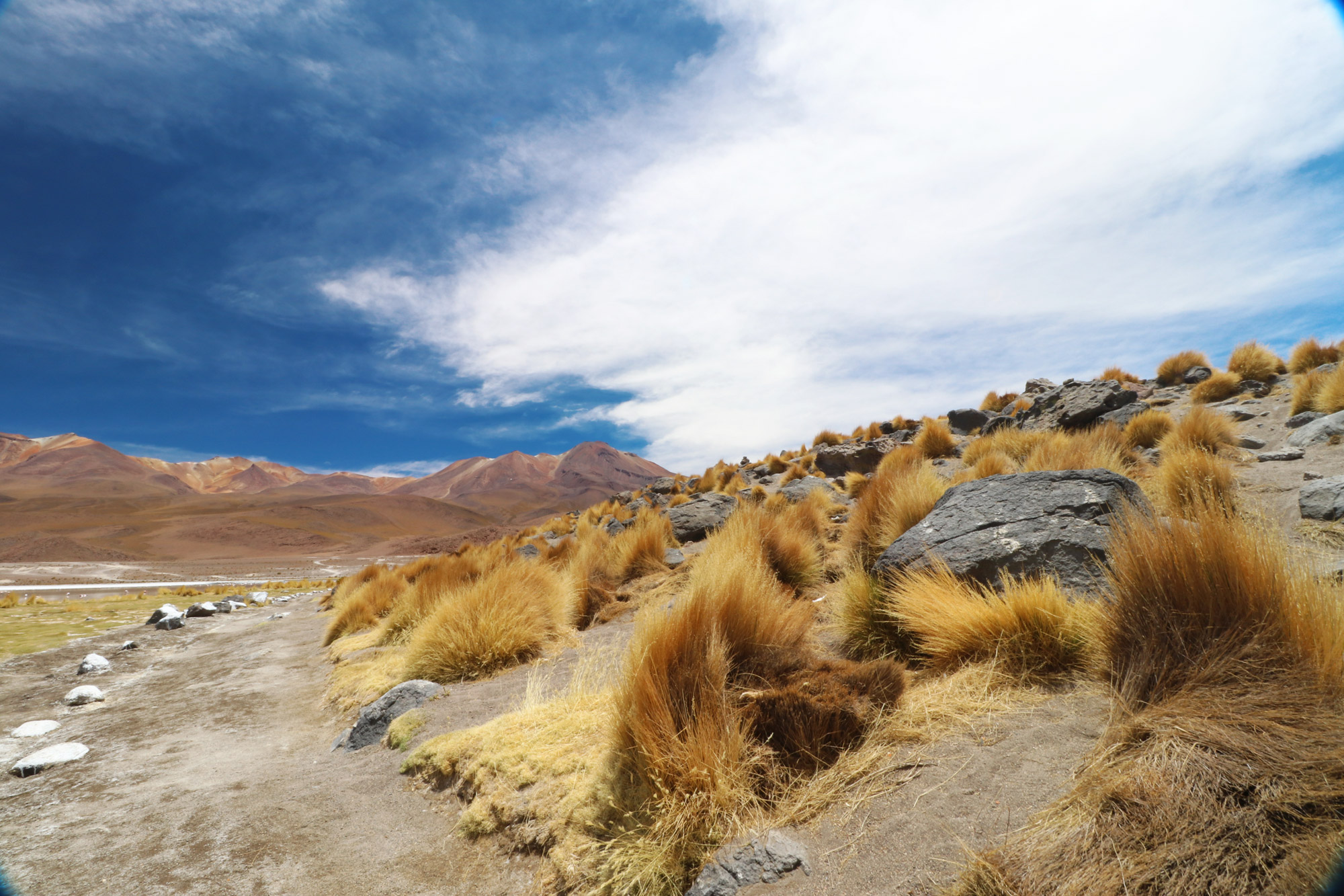 Reisverslag Bolivia: 's wereld grootste zoutvlakte - Laguna Cañapa