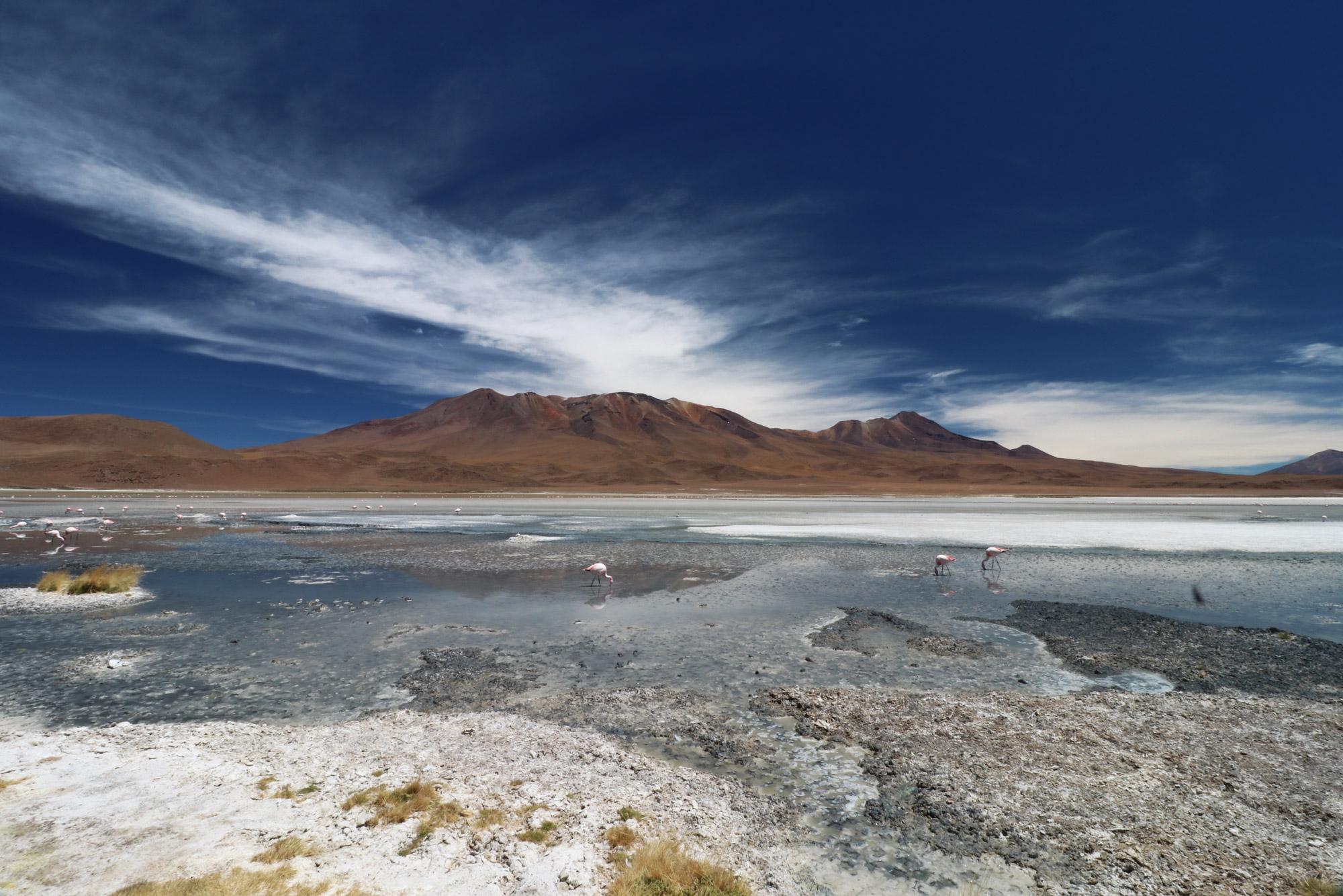 Reisverslag Bolivia: 's wereld grootste zoutvlakte - Laguna Charcota