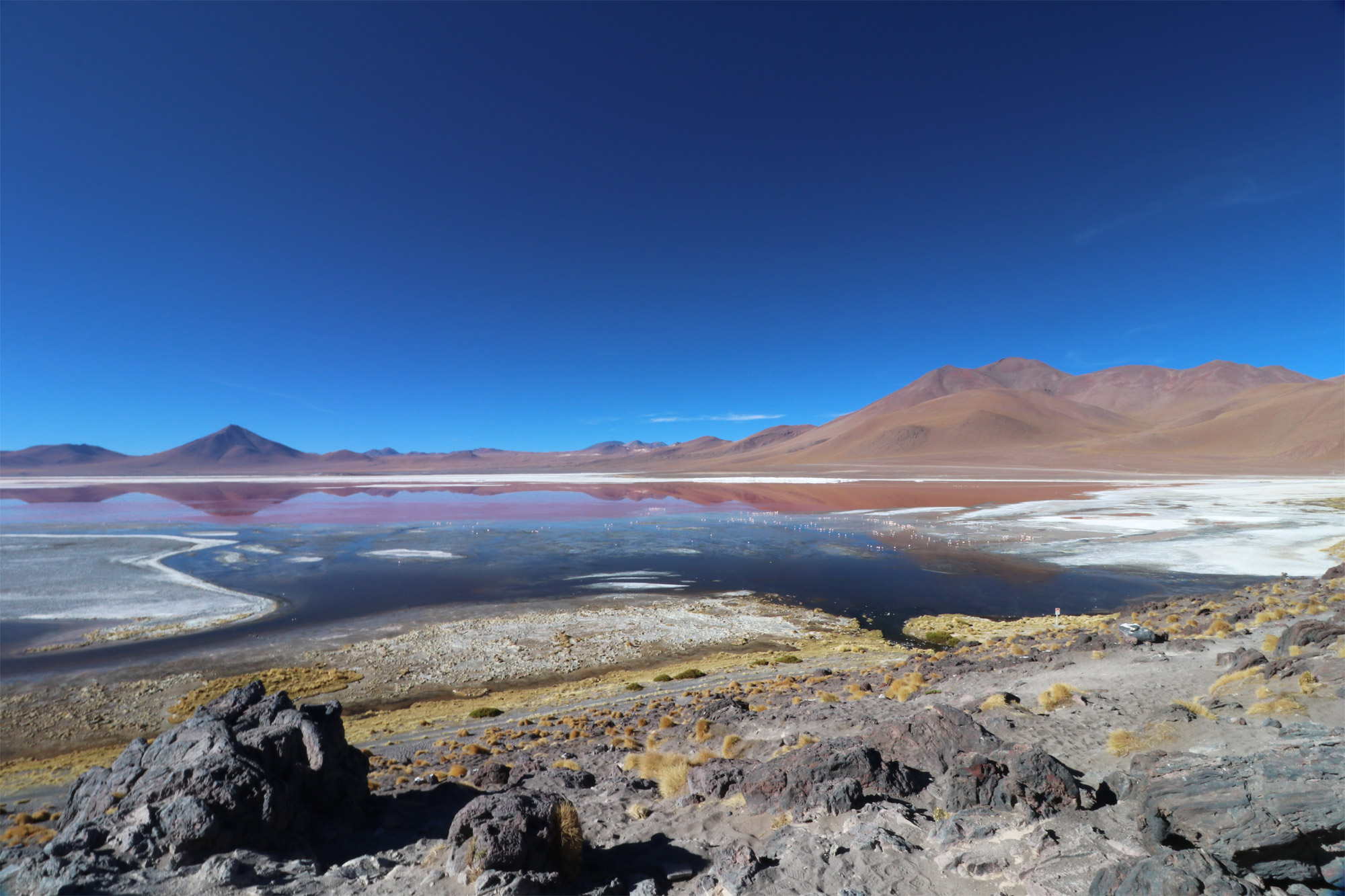 Reisverslag Bolivia: 's wereld grootste zoutvlakte - Laguna Colorada