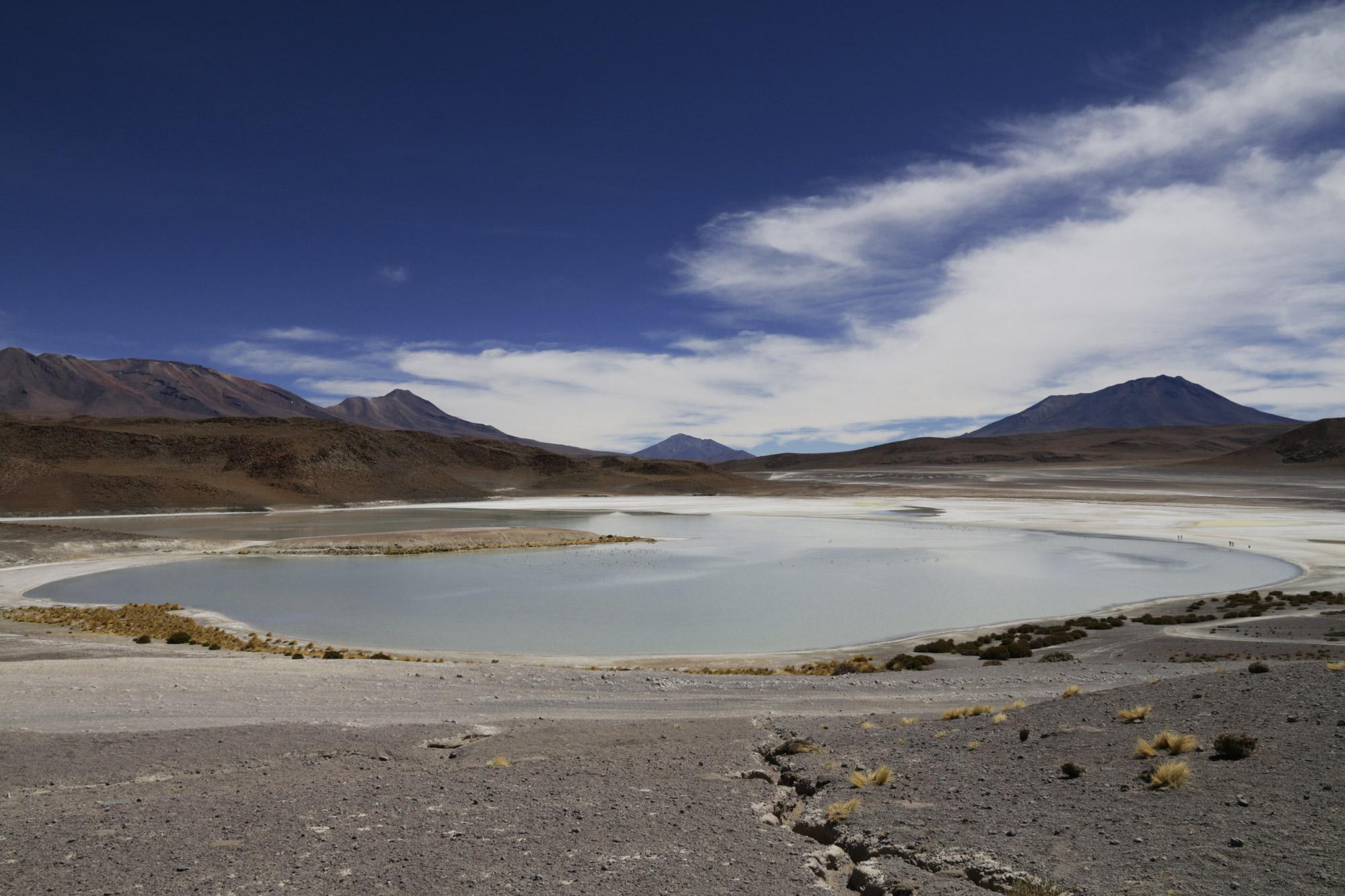 Reisverslag Bolivia: 's wereld grootste zoutvlakte - Laguna Honda