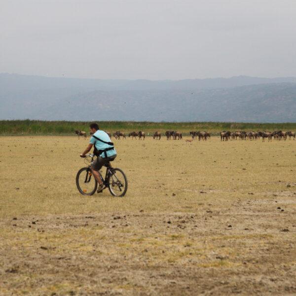 Mountainbike tour Mbo Wa Mbu & Lake Manyara - Mto Wa Mbu - Tanzania