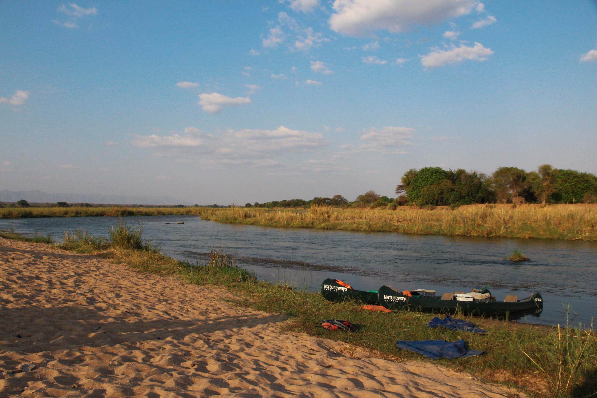 Slalommen om nijlpaarden - een avontuur op de machtige Zambezi rivier - Aanmeren met onze kano's