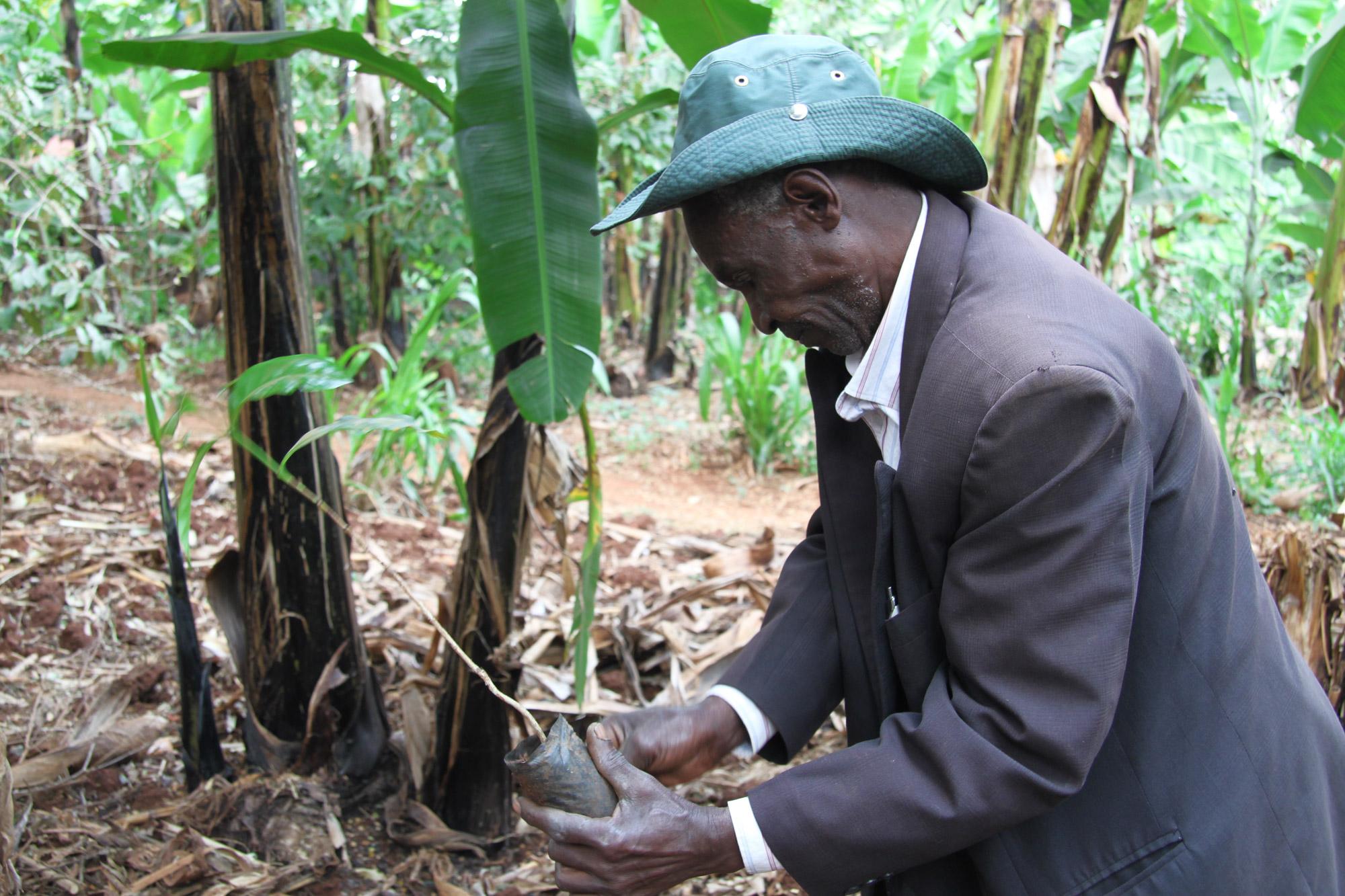 Een bezoek aan een koffieplantage in Tanzania