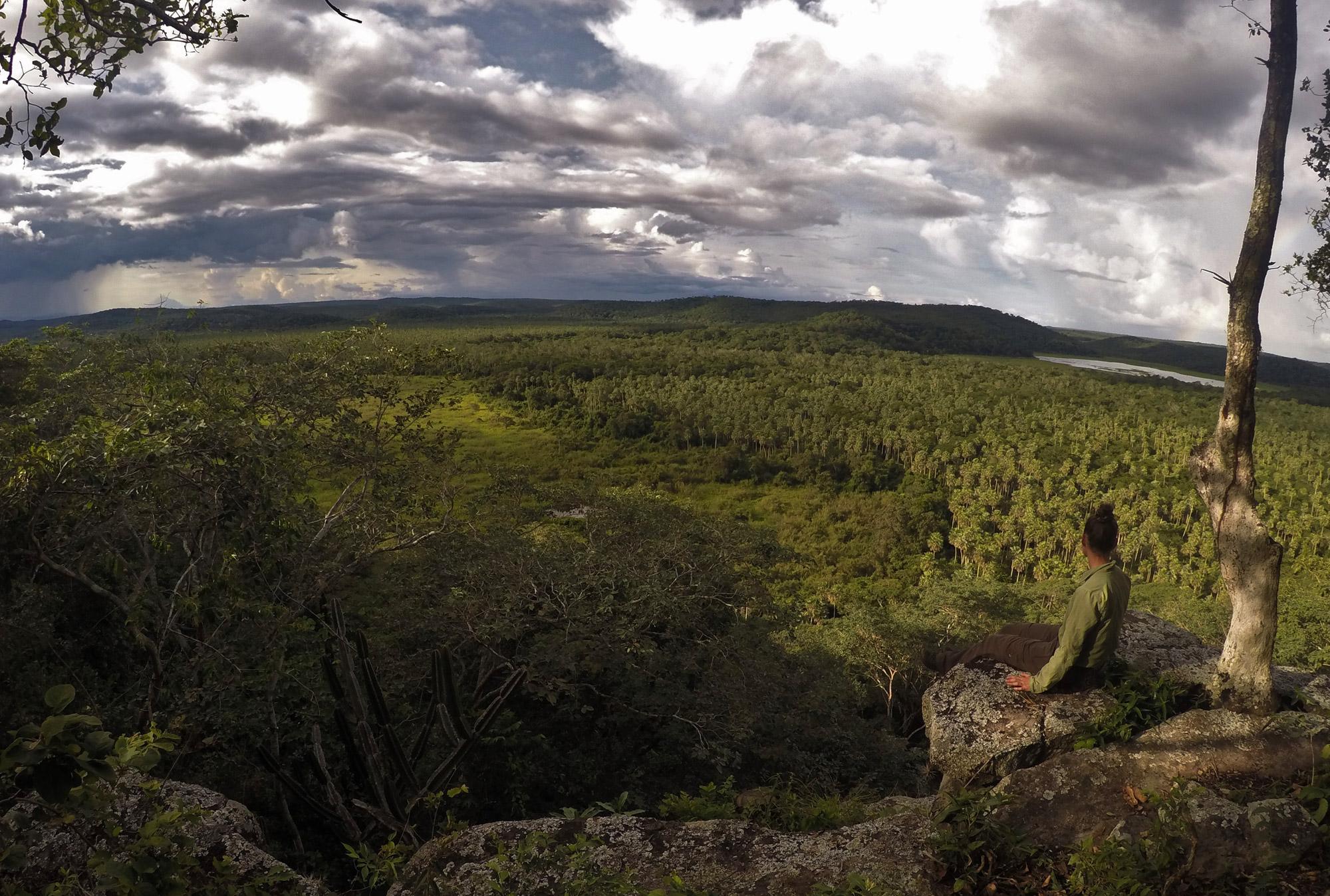 Beste plekken in Bolivia om wildlife te spotten: San Miguelito Jaguar Range