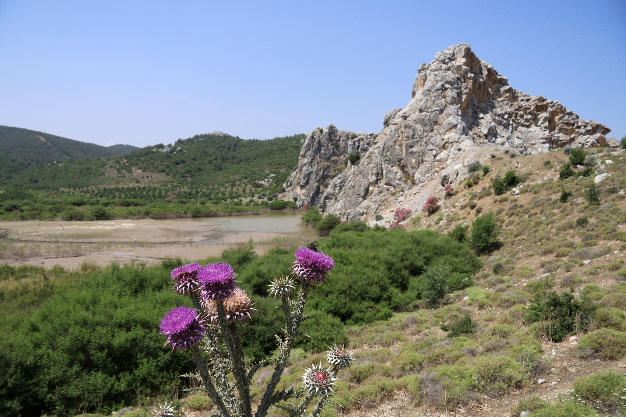 Turkije reisverslag: Bergama en Ayvalik - Fantastische landschappen