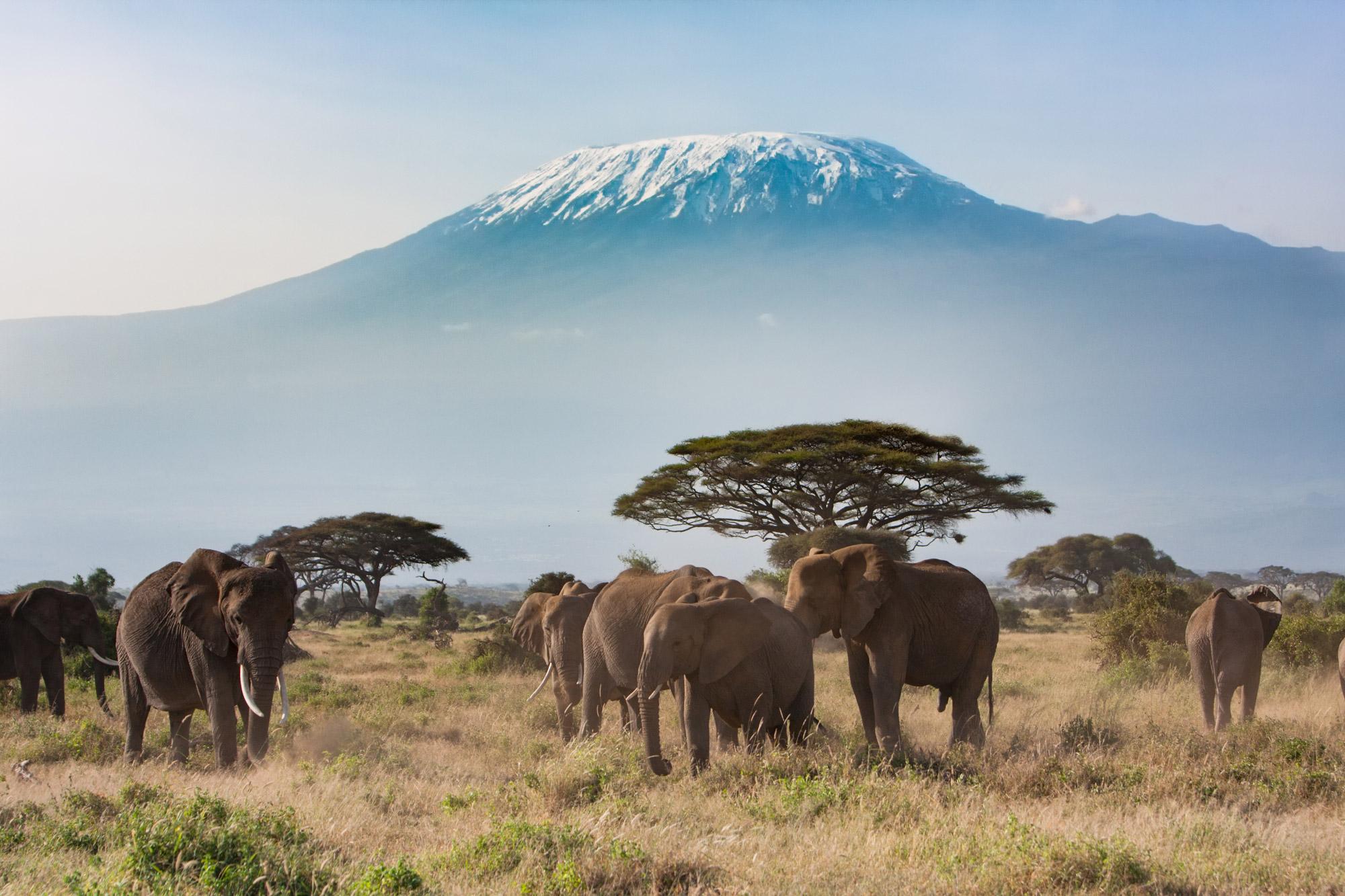 5 bezienswaardigheden die je gezien moet hebben in tanzania - Kilimanjaro