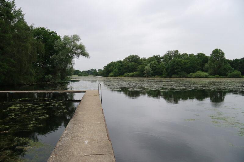 Wandeling Nette Seen - De Wittsee