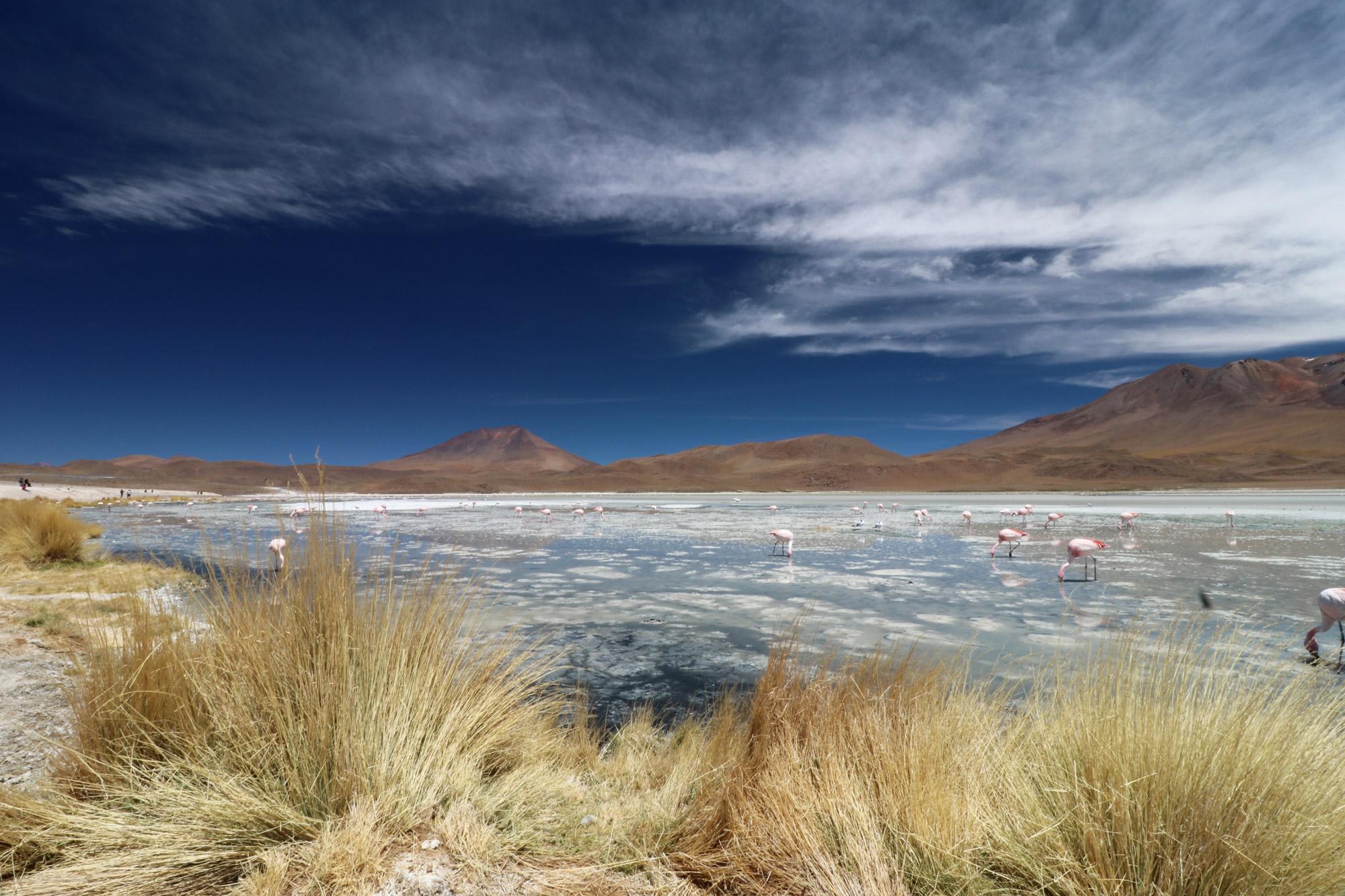 Bolivia 2016 - Dag 11 - Laguna Charcota