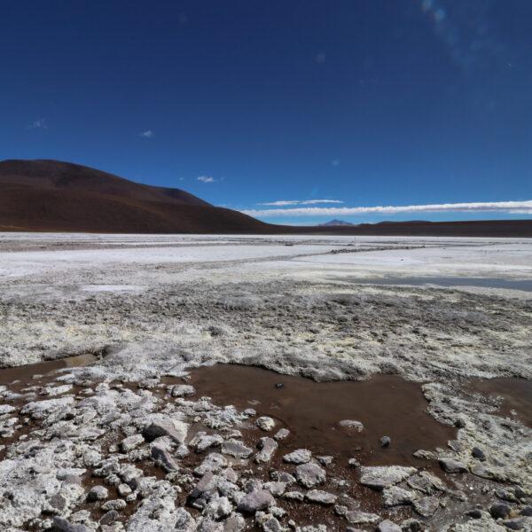Laguna Kollpa - Potosí Department - Bolivia