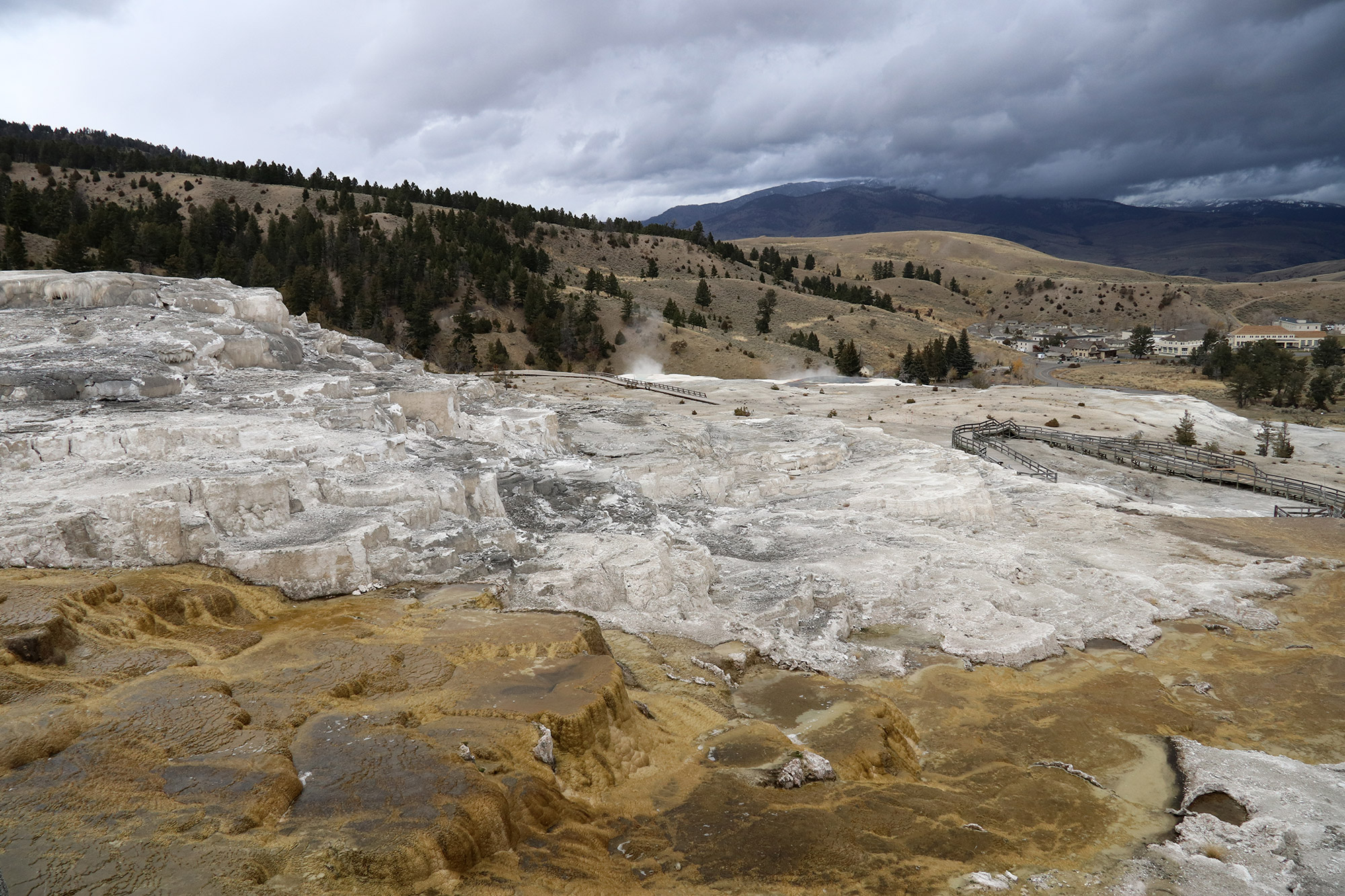 Amerika dag 4 - Yellowstone National Park - Mammoth Hot Springs - Lower Terrace