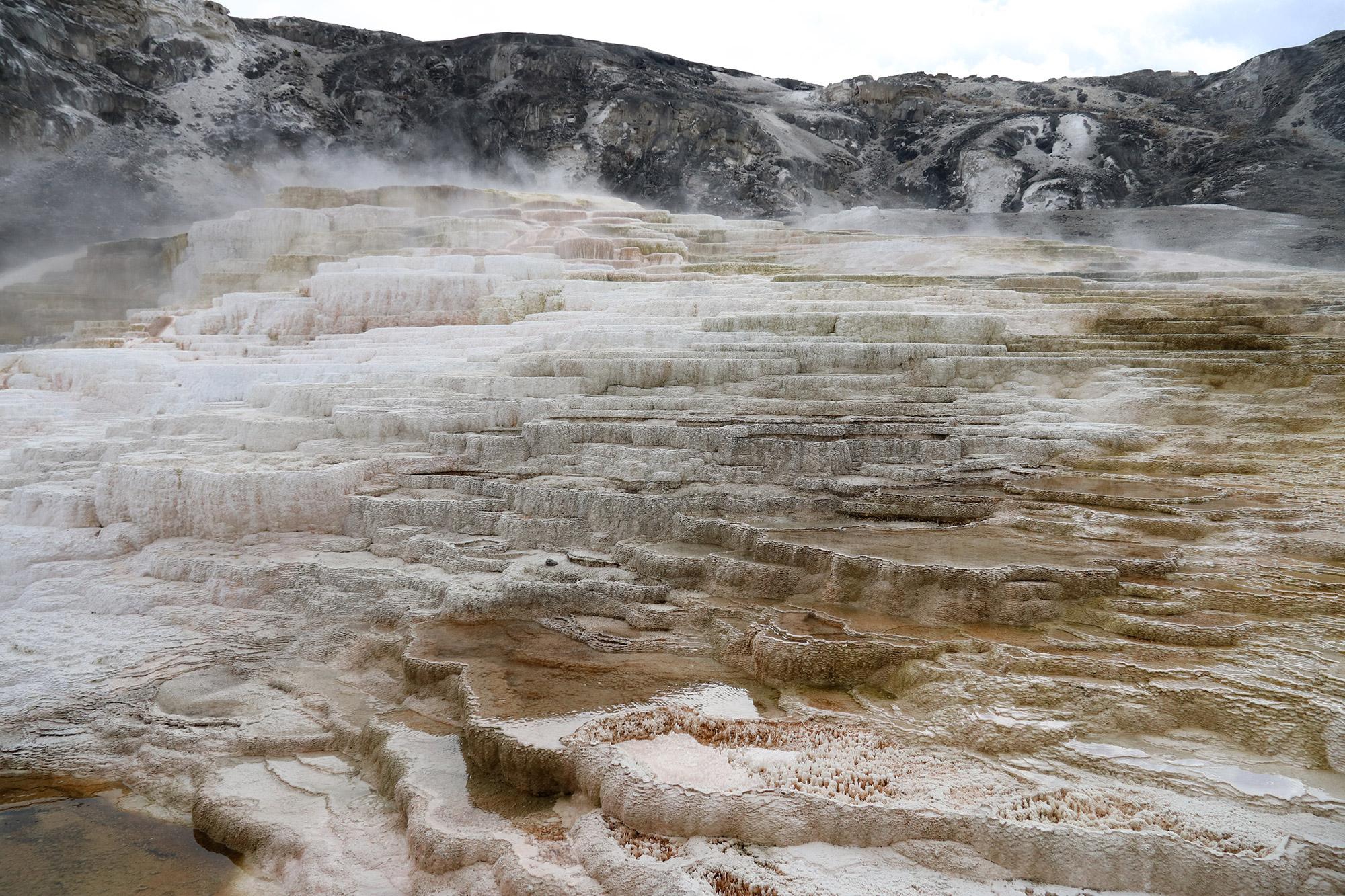 Amerika dag 4 - Yellowstone National Park - Mammoth Hot Springs - Minerva Terrace