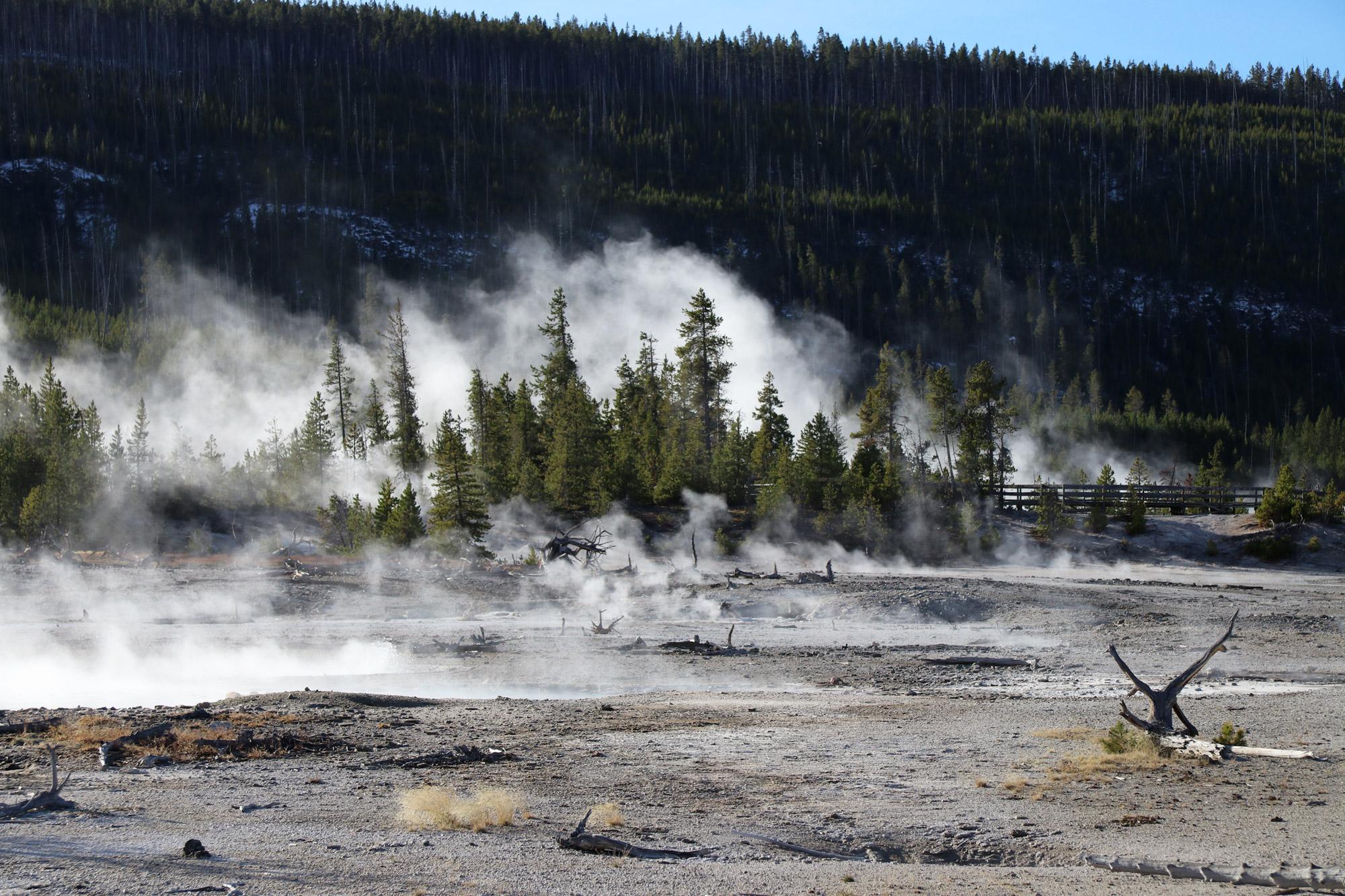 Amerika dag 5 - Yellowstone National Park - Norris Geyser Basin