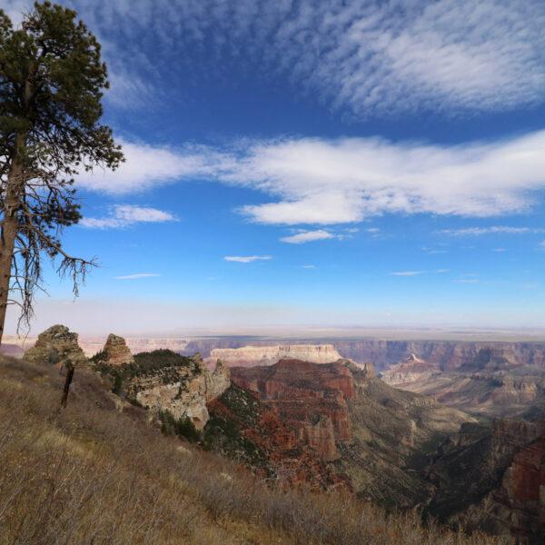 Verenigde Staten - Arizona